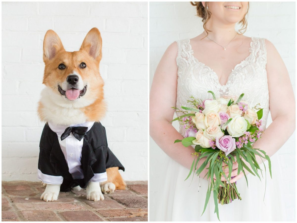 Corgi Dog Wedding Photos at Ashford Acres Inn in Cynthiana, Kentucky.