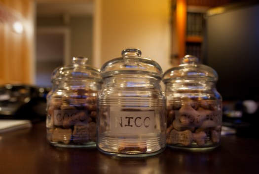 The Treat Jars