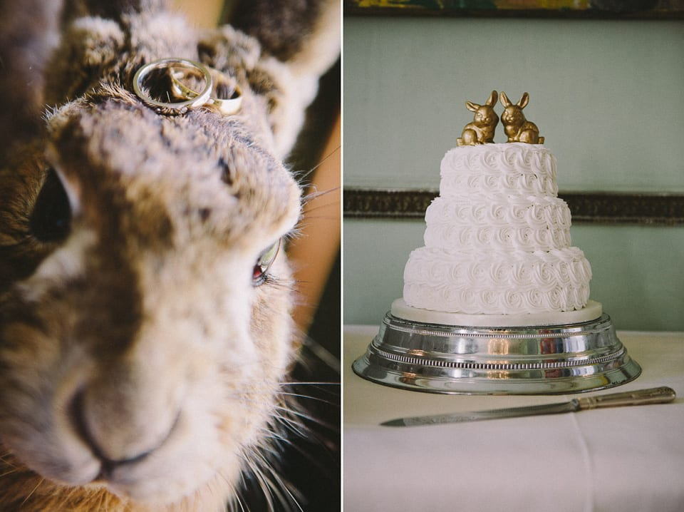 cake and rings