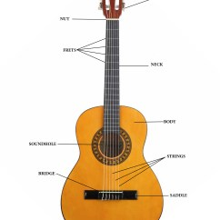 Guitar Parts Diagram 2008 Jeep Wrangler Stock Radio Wiring Kia Body Get Free Image About