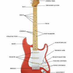 Guitar Parts Diagram Three Way Lighting Circuit Fender Get Free Image About