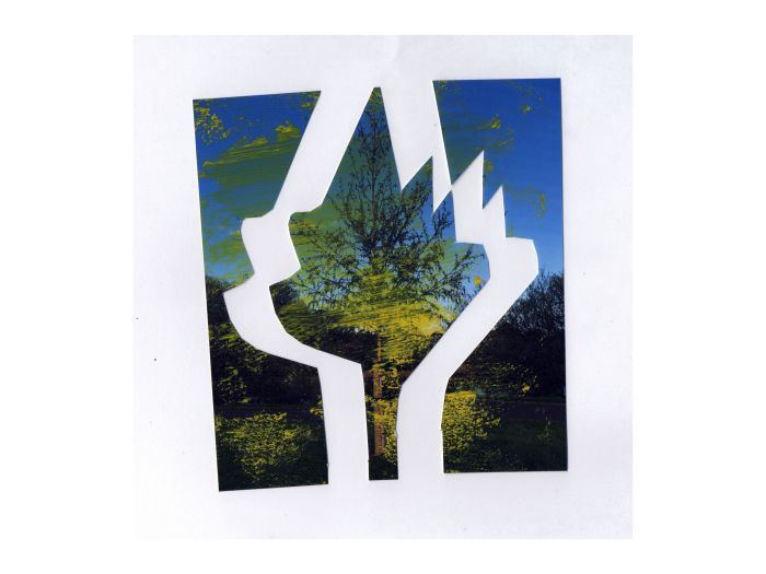 Photographic Cut-Out (After Matisse).