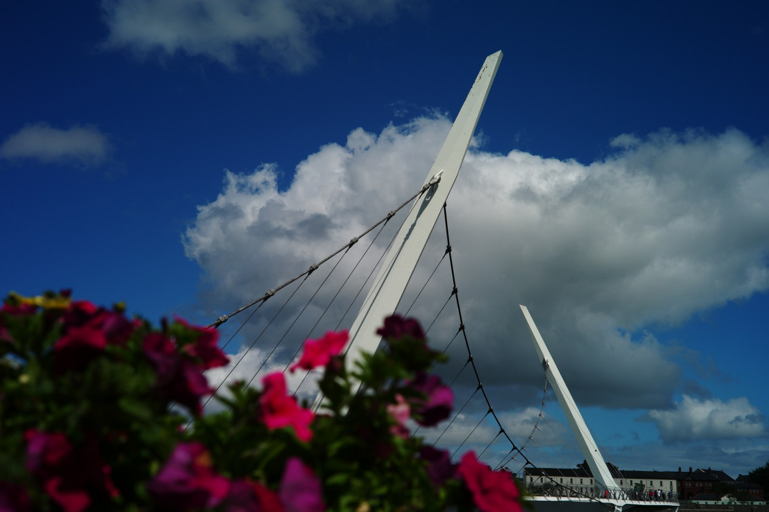 Peace Bridge, detail.