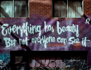 Everything has beauty, but not everyone could see.