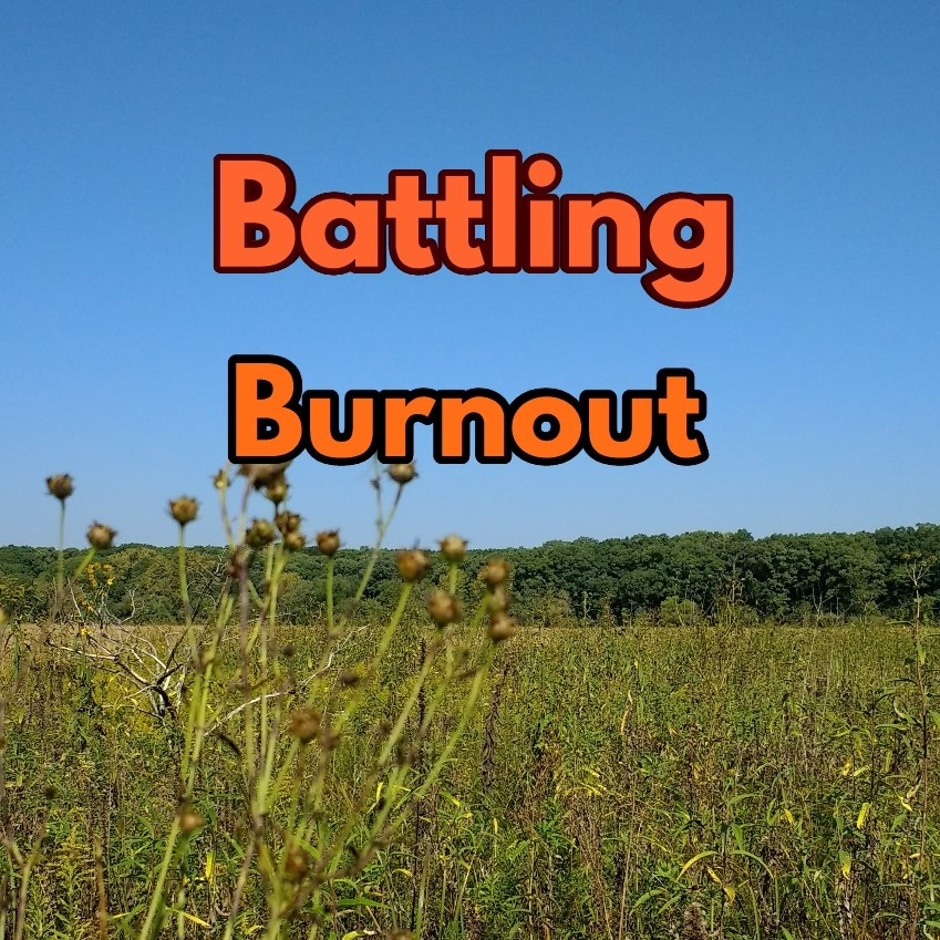 Battling Burnout: A Recreation Therapist's Guide
