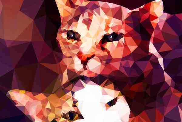 Crystalline Pet Portraiture by Kevin Halfhill