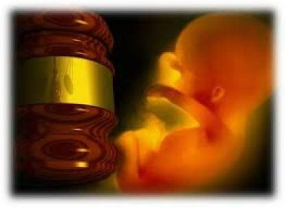 gavel unborn