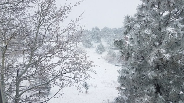snow in golden, Colorado