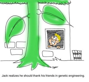 "Cartoon of Jack and the Beanstalk. The caption says, ""Jack realizes he should thank his friends in genetic engineering."""