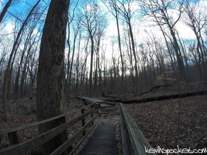 Devil's Half Acre Hike - Sourland Mountain Preserve