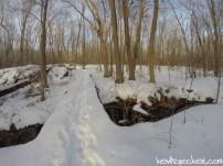 Hike 06: Sourland Mountain Preserve
