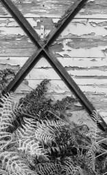 Bracken, wood, and iron