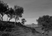 2014-10-2, RZ67, Boreraig, Portra 160, Jobo, Digibase, 036-2