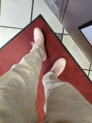 Kevy Pink Shoes