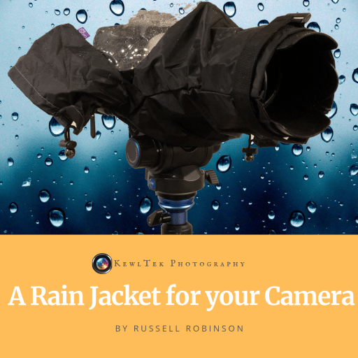 If you shoot in the rain, you should have a dslr rain cover