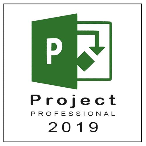 buy project pro 2019 online