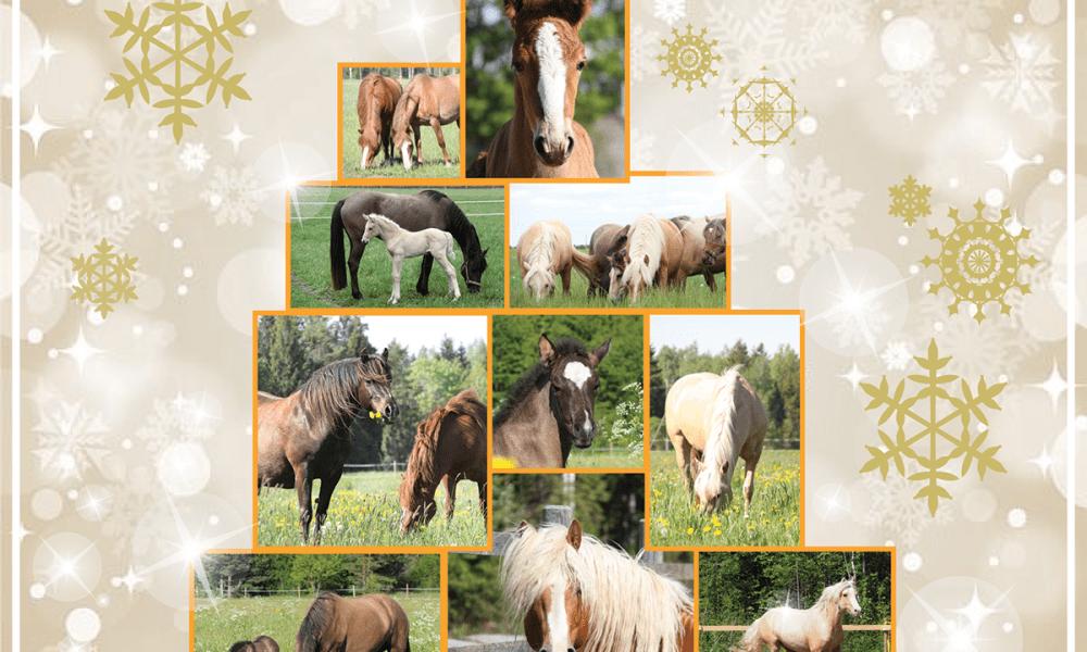 Key hobumajandus soovib Häid Jõule ja Õnnelikku Uut Aastat!