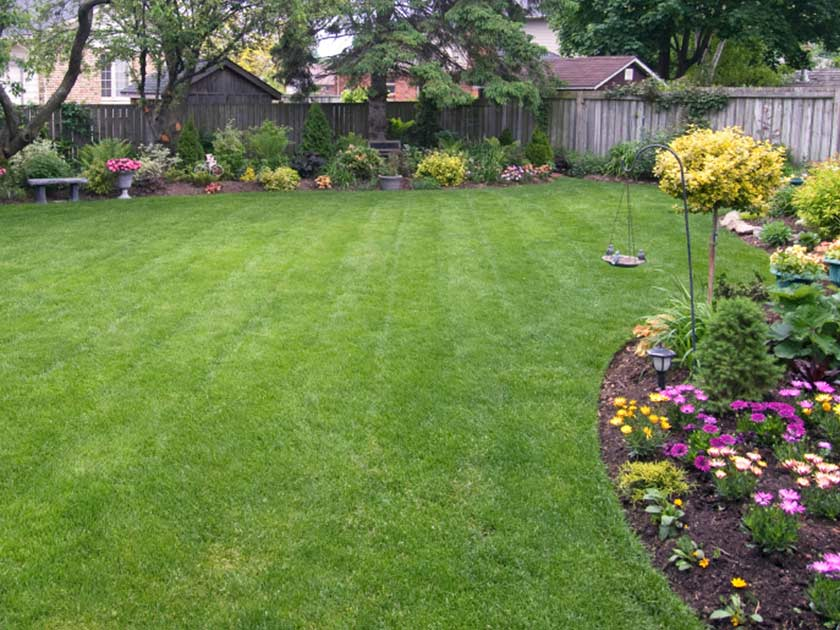 Spruce Up Your Garden Lawn For Spring