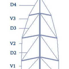Standing Rigging Diagram Wiring Diagrams Ibanez Guitars Improving Performance Through Tuning Yachting World Mast Layout