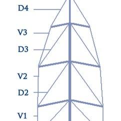 Standing Rigging Diagram Lan Socket Wiring Improving Performance Through Tuning Yachting World Mast Layout