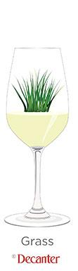 grass aromas in wine