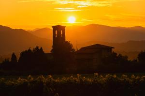 Franciacorta wineries