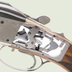 Duck Skeleton Diagram Gibson Les Paul Standard 2016 Wiring Parts Of A Bird ~ Elsavadorla