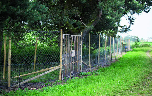 Ivtrouble Shooting Your Electric Fence