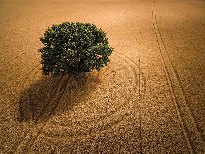 © Landschap Fotograaf van het jaar awards - David Hopley