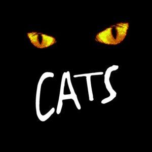 Cats musical keybaord programming