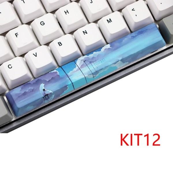 KIT 12_dye-subbed-space-bar-6-25-u-oem-profile-p_variants-14