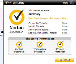 Image result for Norton Safe Search 2020 Crack