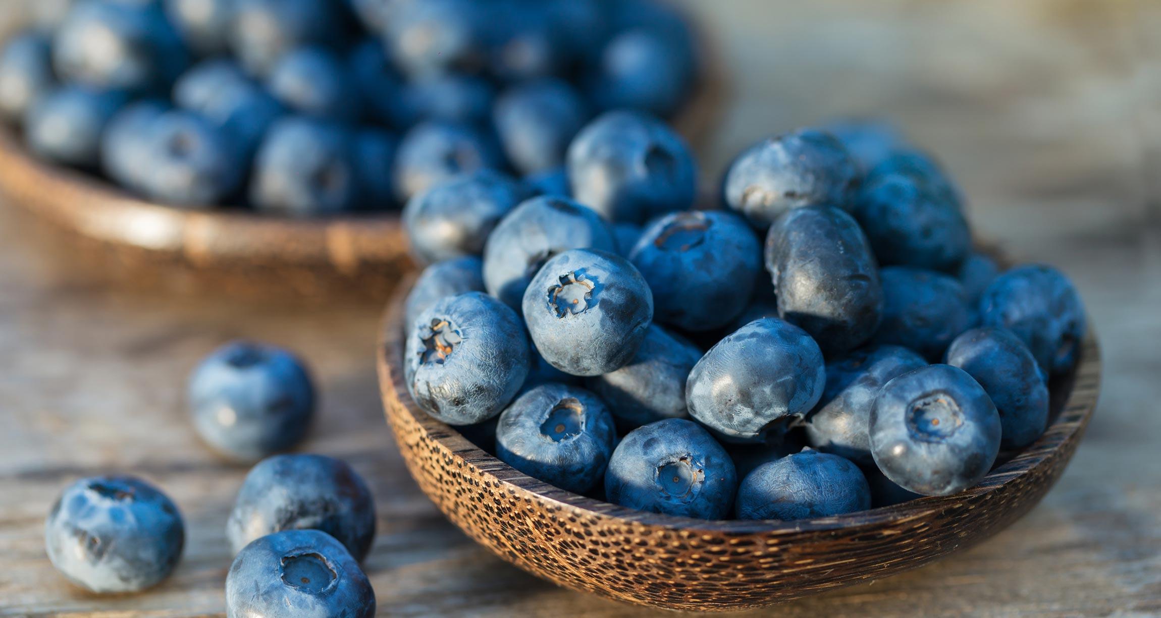 Yaban Mersinli Chia Tohumlu Kolay Sağlıklı Reçel Tarifi