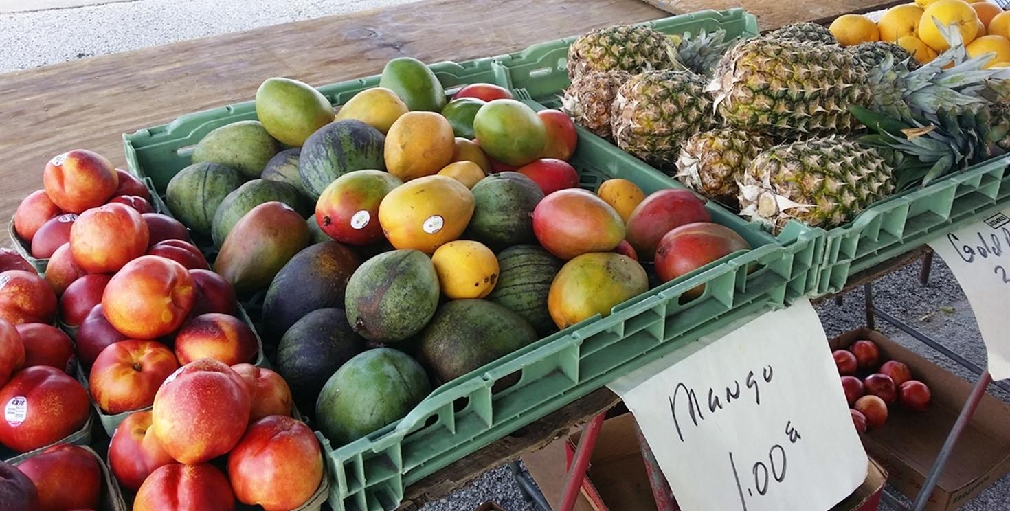 Daytona Beach Downtown Farmers Market