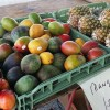 Produce at Daytona Beach Farmers Market