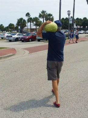 Watermelon bought at Daytona Beach farmers market