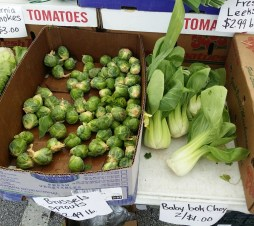 Daytona Beach farmers market vegetables