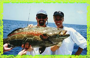 key west grouper fishing