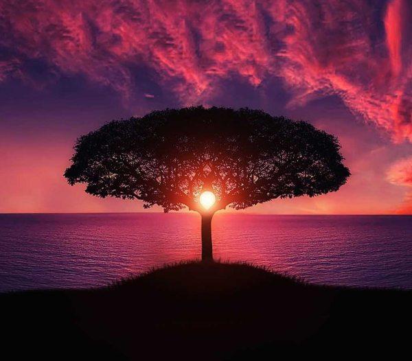 """Key Mindfulness - the """"Key for Me"""""""