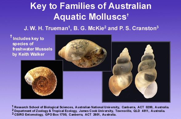 Families of Australian Aquatic Molluscs home screen