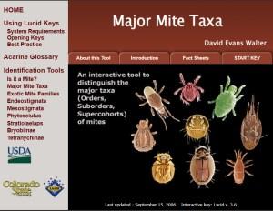 Invasive Mite Identification: Tools for Quarantine and Plant Protection - Major Mite Taxa