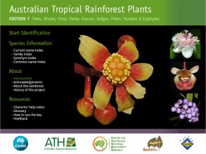 Australian Tropical Rainforest Plants