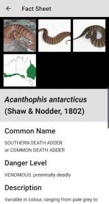 Australian Snake ID Fact sheet example