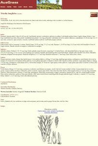 AusGrass: Grasses of Australia fact sheet example