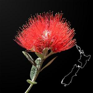 NZ Myrtaceae Lucid Mobile App icon
