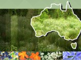 Environmental Weeds of Australia banner