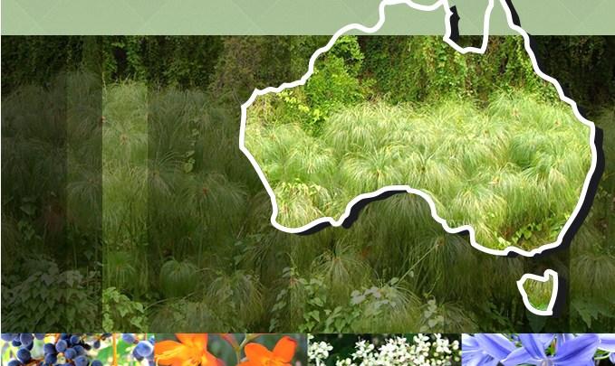 Environmental Weeds of Australia banner