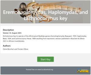 Eremohaplomydas, Haplomydas, and Lachnocorynus key home