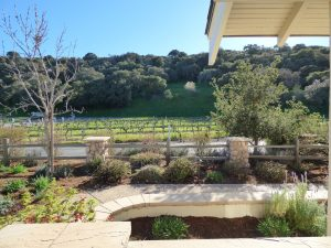 riverbench winery, santa maria, ca