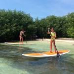 Motor | Paddleboard Combo